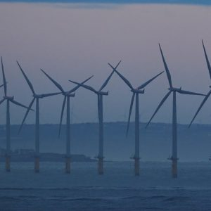 GOP Focuses On Oil Rigs Forming Artificial Reefs, Something Offshore Wind Would Also Provide
