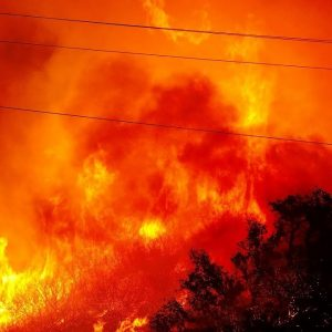 JUST IN: California Official Says Alisal Fire Is 'Looking Much Better'