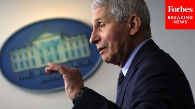 Fauci Says People Should Feel Free To 'Enjoy The Holidays' With Family This Year   Forbes