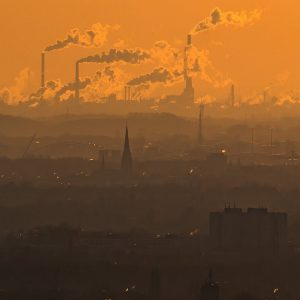 WHO Calls Climate Change 'Single Biggest Health Threat Facing Humanity' | Forbes