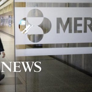 Merck applied for US emergency use authorization for COVID-19 pill | WNT