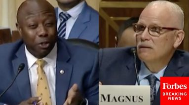 'Is There A Crisis At Our Border?' Tim Scott Has Tense Questioning Of Biden Border Chief Nominee