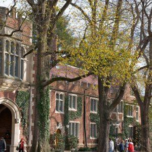 'Kudos To Free Speech': Steve Forbes Praises Princeton For Hosting Professor Canceled By 'Woke' MIT